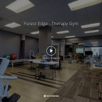 forest-edge-therapy-gym